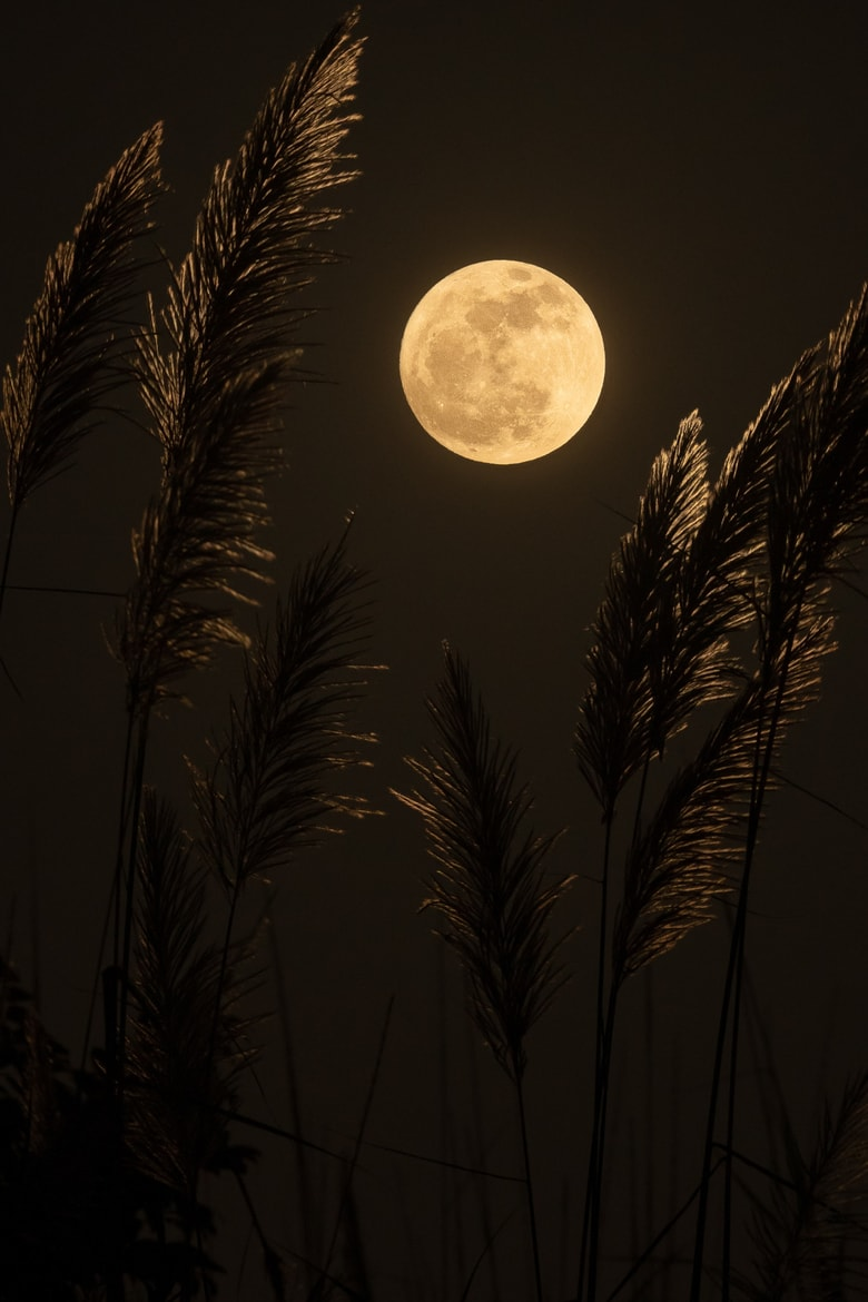 Full moom at night with golden plant branches in the forefront
