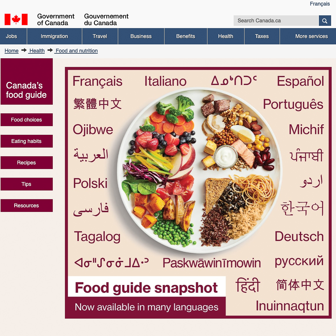 Canada's Food Guide plate with fruits and vegetables, fish, beans, meat and poultry, pasta, bread, rice and grains written in different languages