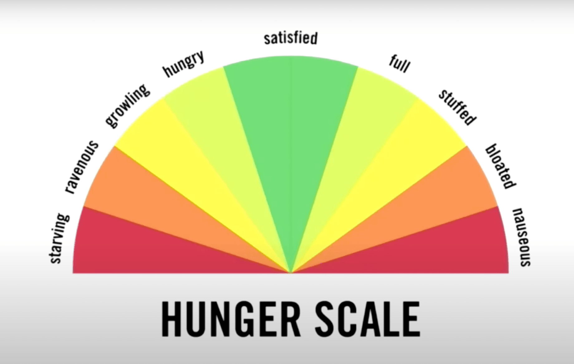 hunger scale, semi circle with red, amber, green to educate about emotional eating