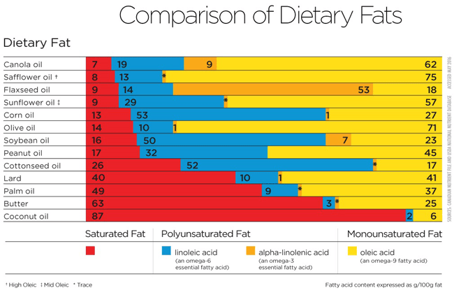 chart comparing different types of fats according to their fatty acid profile